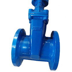 AS2129 NRS/OS&Y Resilient Seat Gate Valve