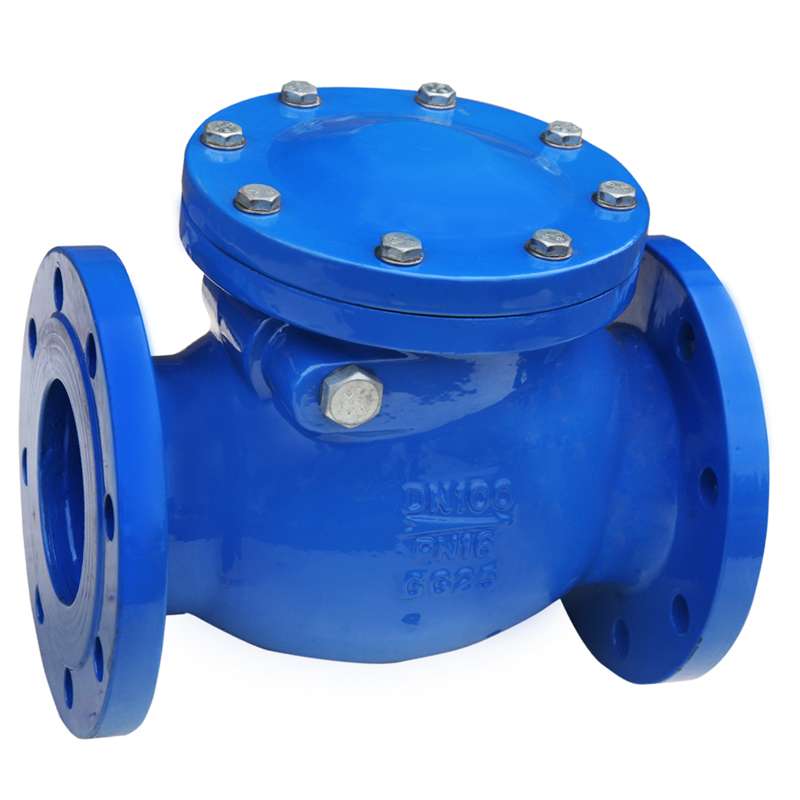 ANSI DIN BS Swing Check Valve
